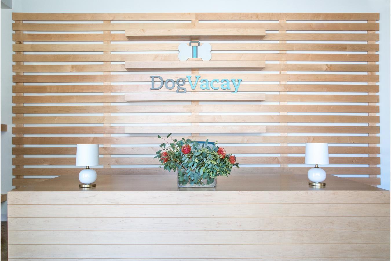 dog-vacay-santa-monica-3