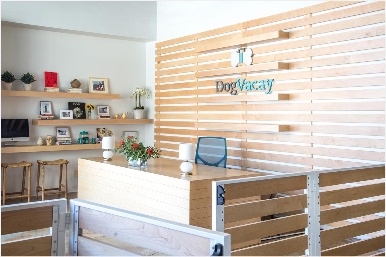 dog-vacay-santa-monica-4