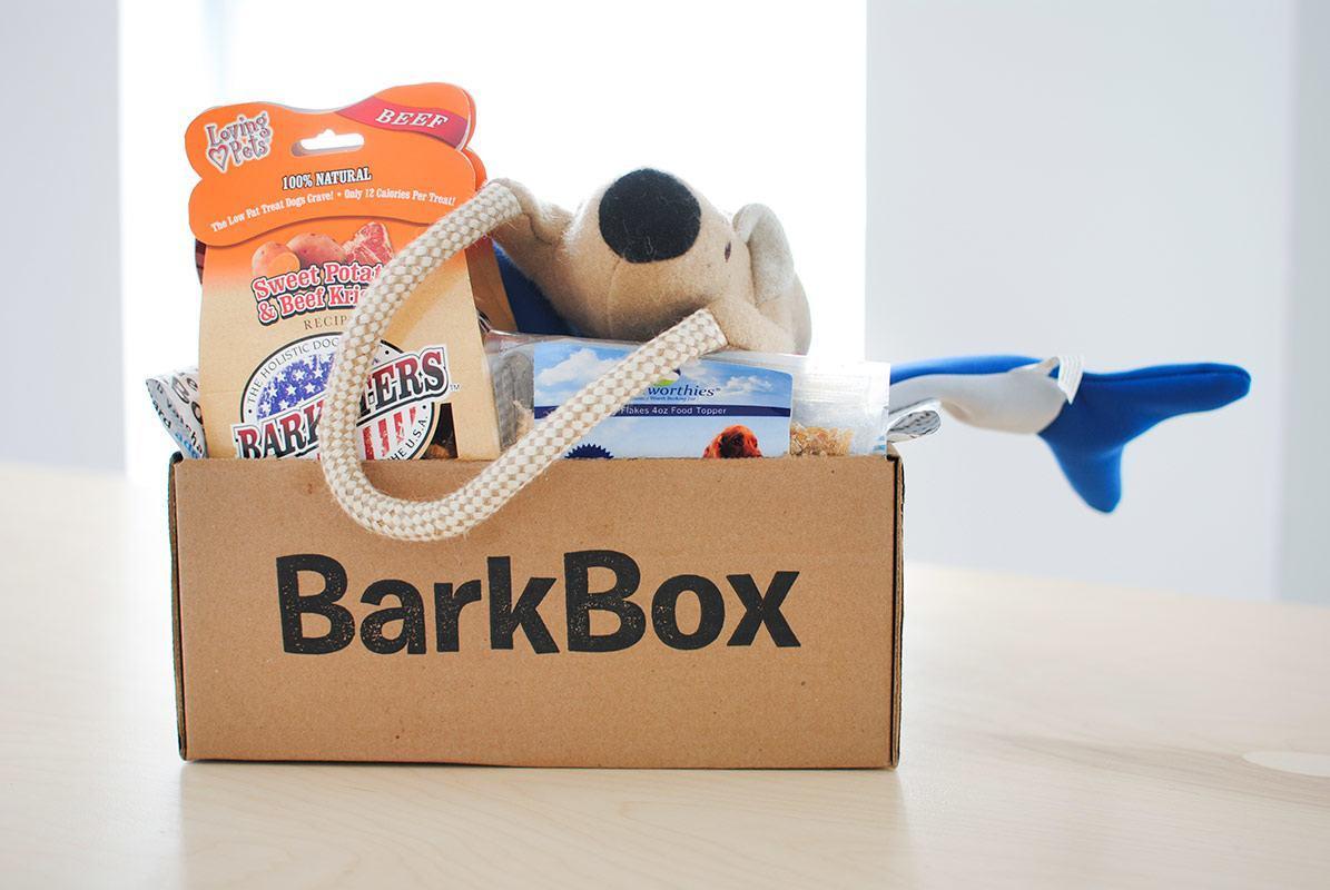 barkbox-headquarters-new-york-city-9