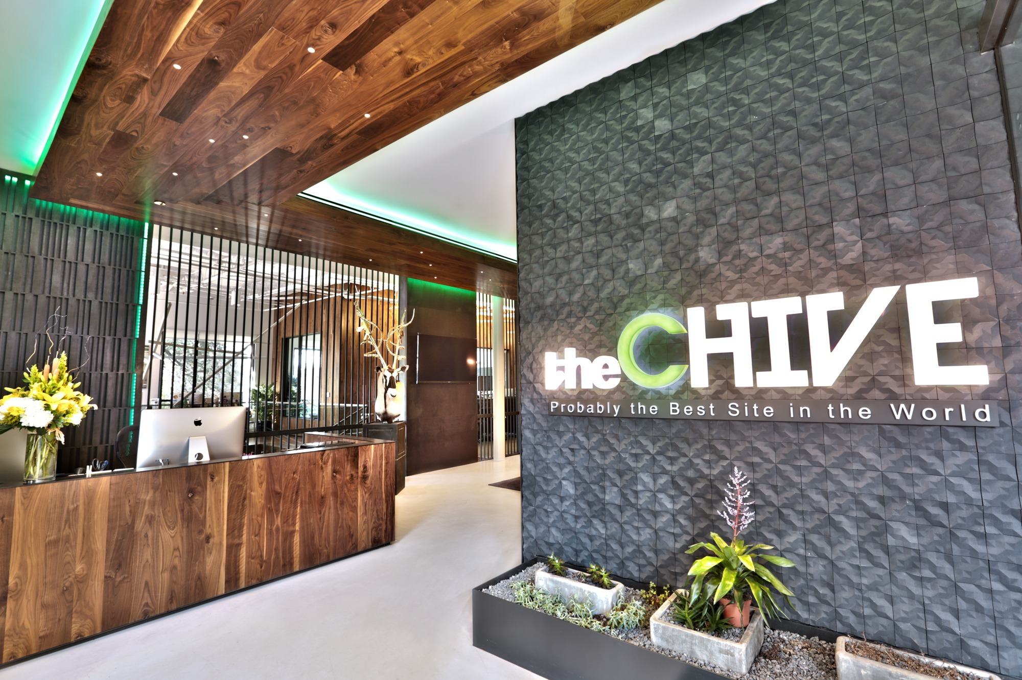 chive austin office. Lobby Chive Austin Office S