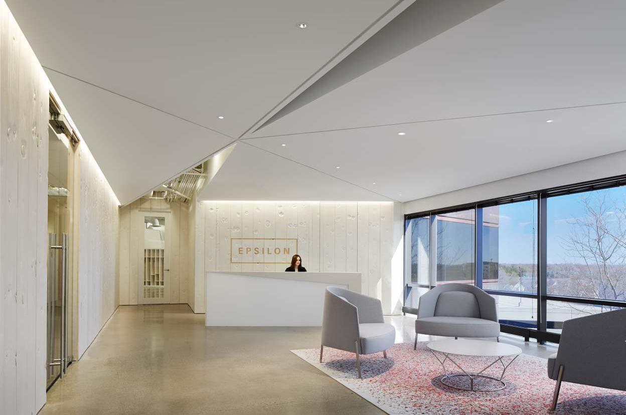 Take a Look at Epsilon's Elegant Office