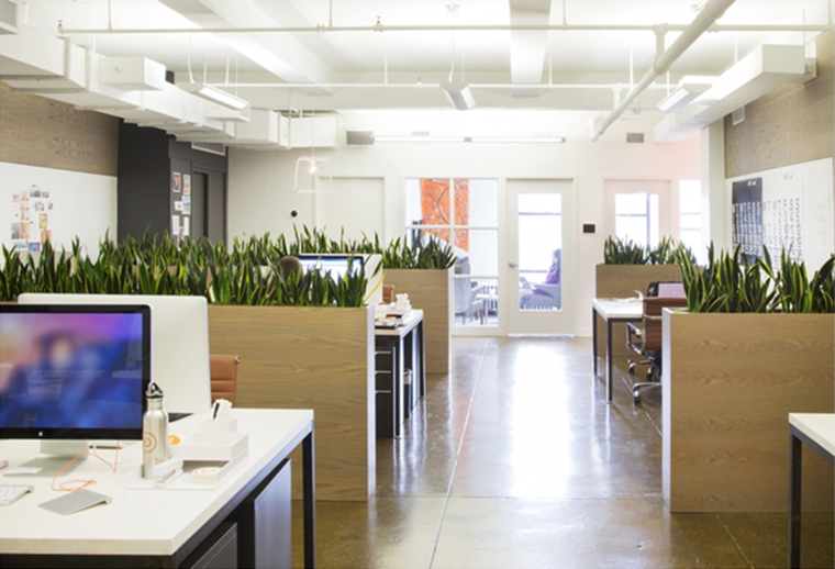 A Look Inside Day One Agency's Modern NYC Office