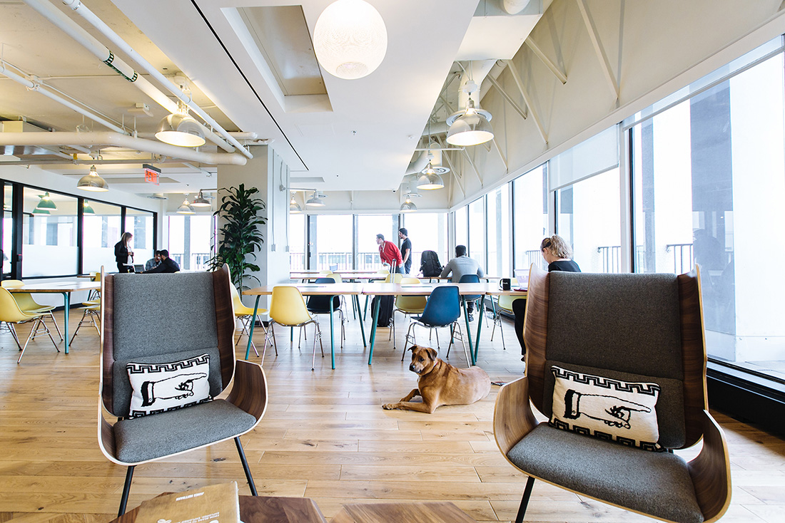 A Look Inside WeWork – Crystal City