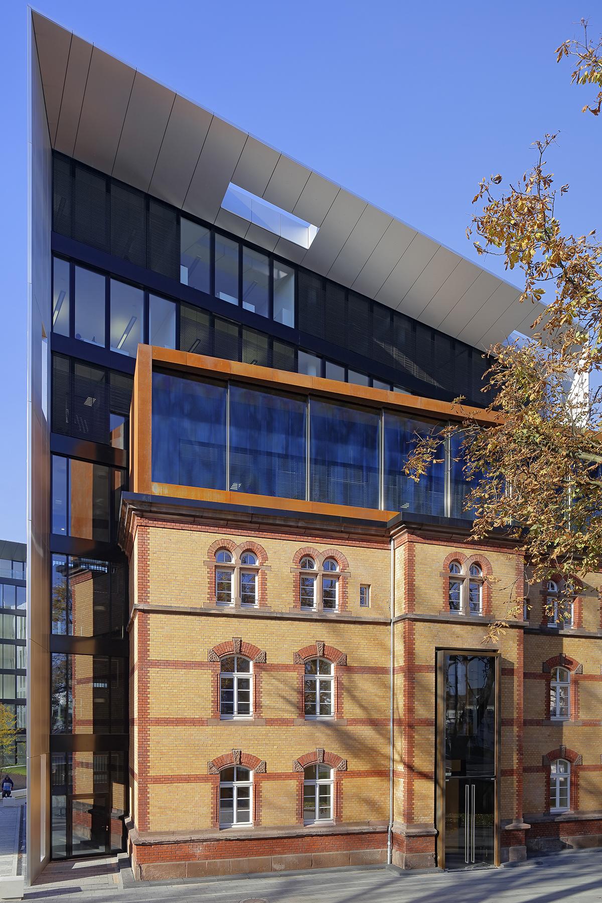 dentus-aegis-office-6