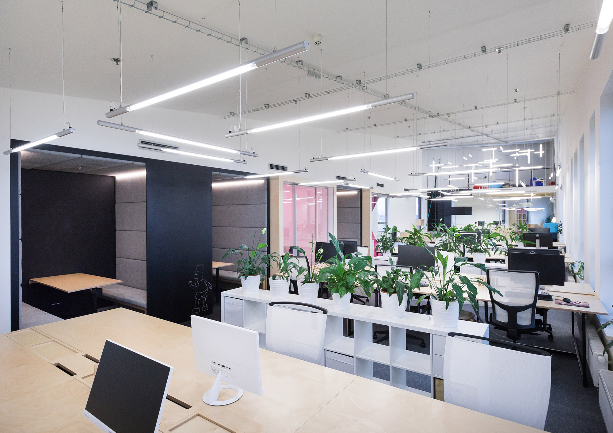 ackee-office-7