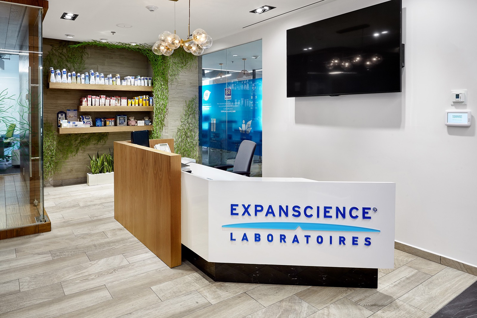 expancience-office-1