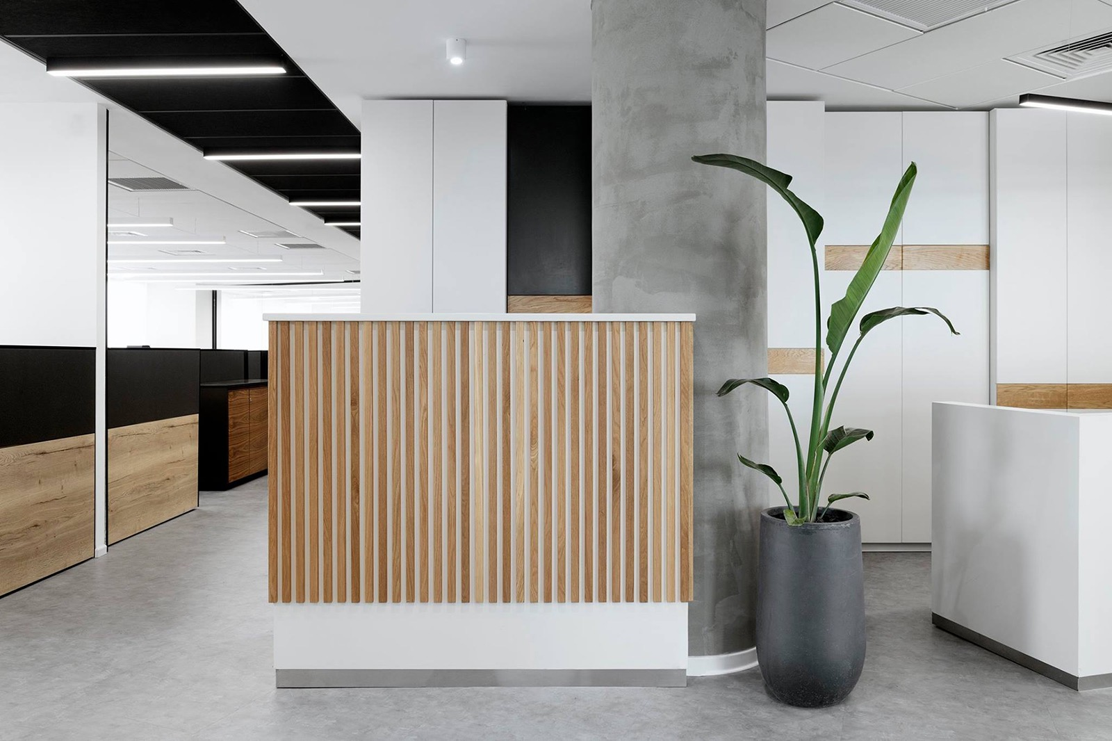 kesh-insurance-office-9