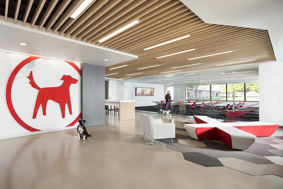 A Tour Of Redtail Technology S Dog Friendly Office In