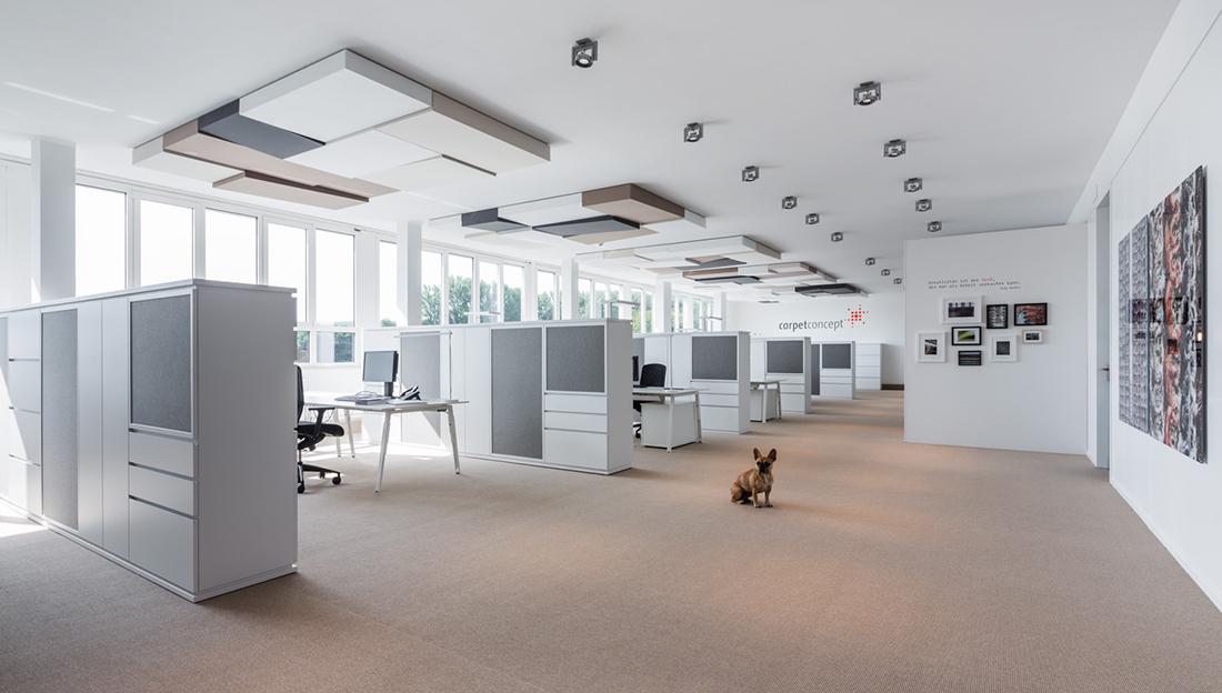 Inside Carpet Concept's Minimalist HQ in Bielefeld