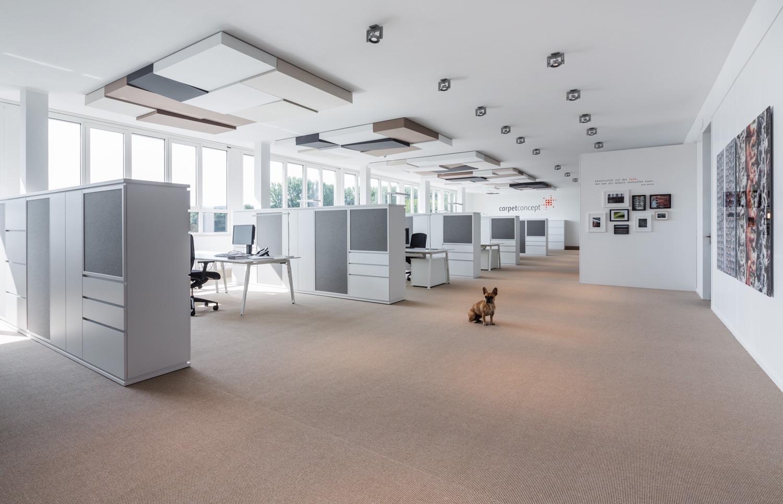 carpet-concept-new-hq-1