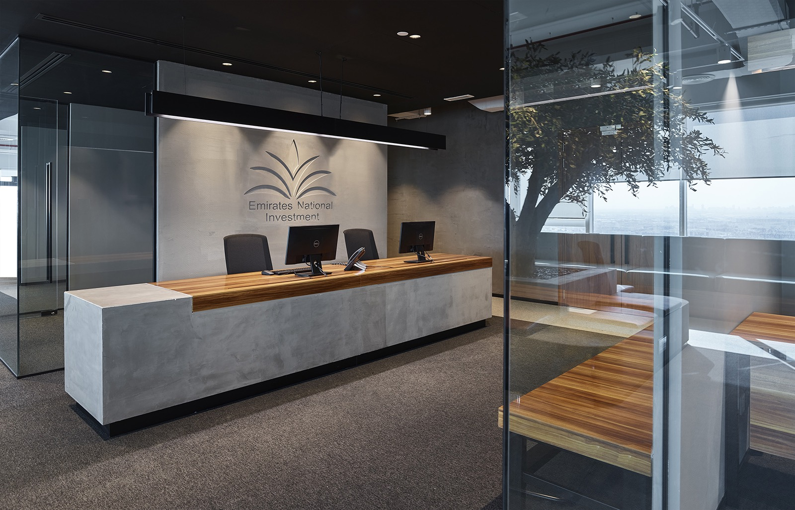emirates-national-investment-office-4