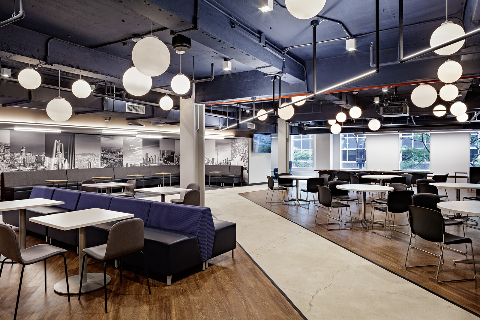 alm-media-nyc-office-4