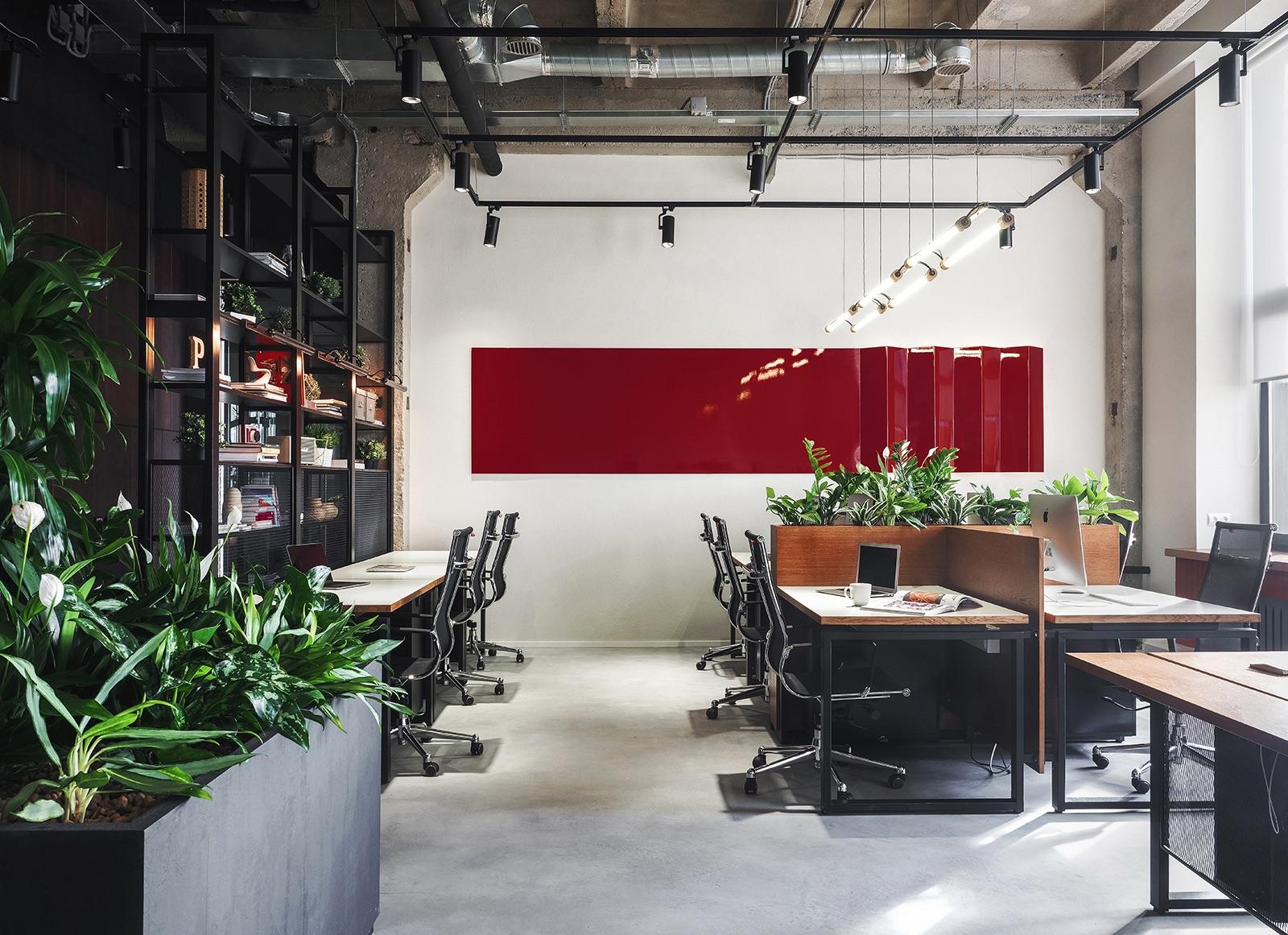 petshop-saint-pettesburg-office-12