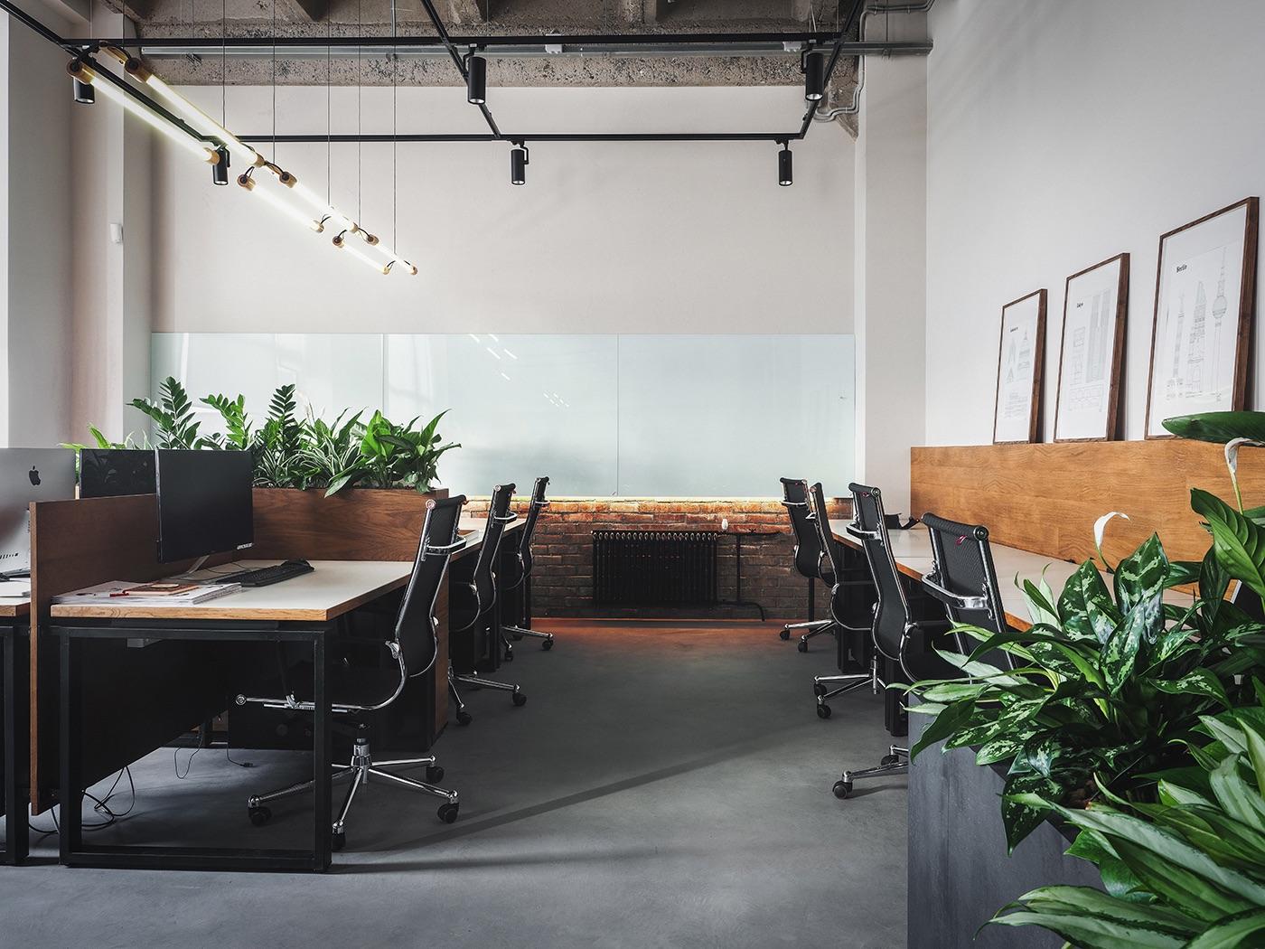 petshop-saint-pettesburg-office-15