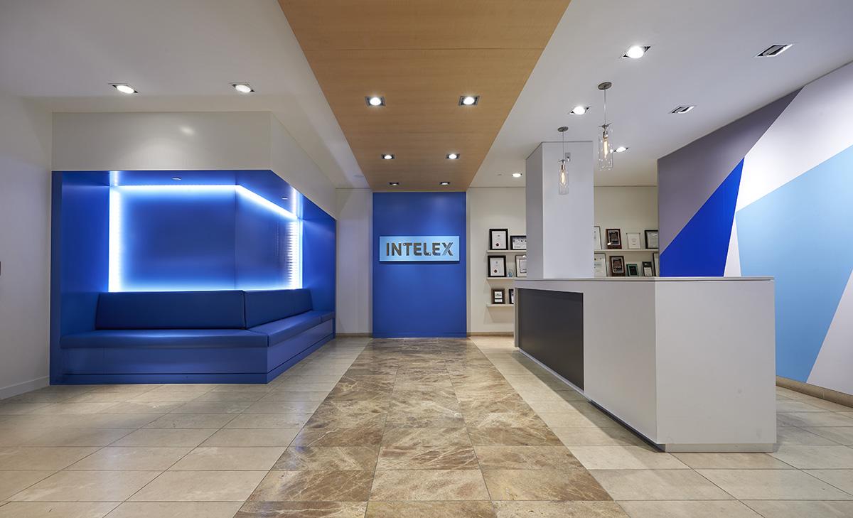 A Look Inside Intelex's Modern Toronto Office