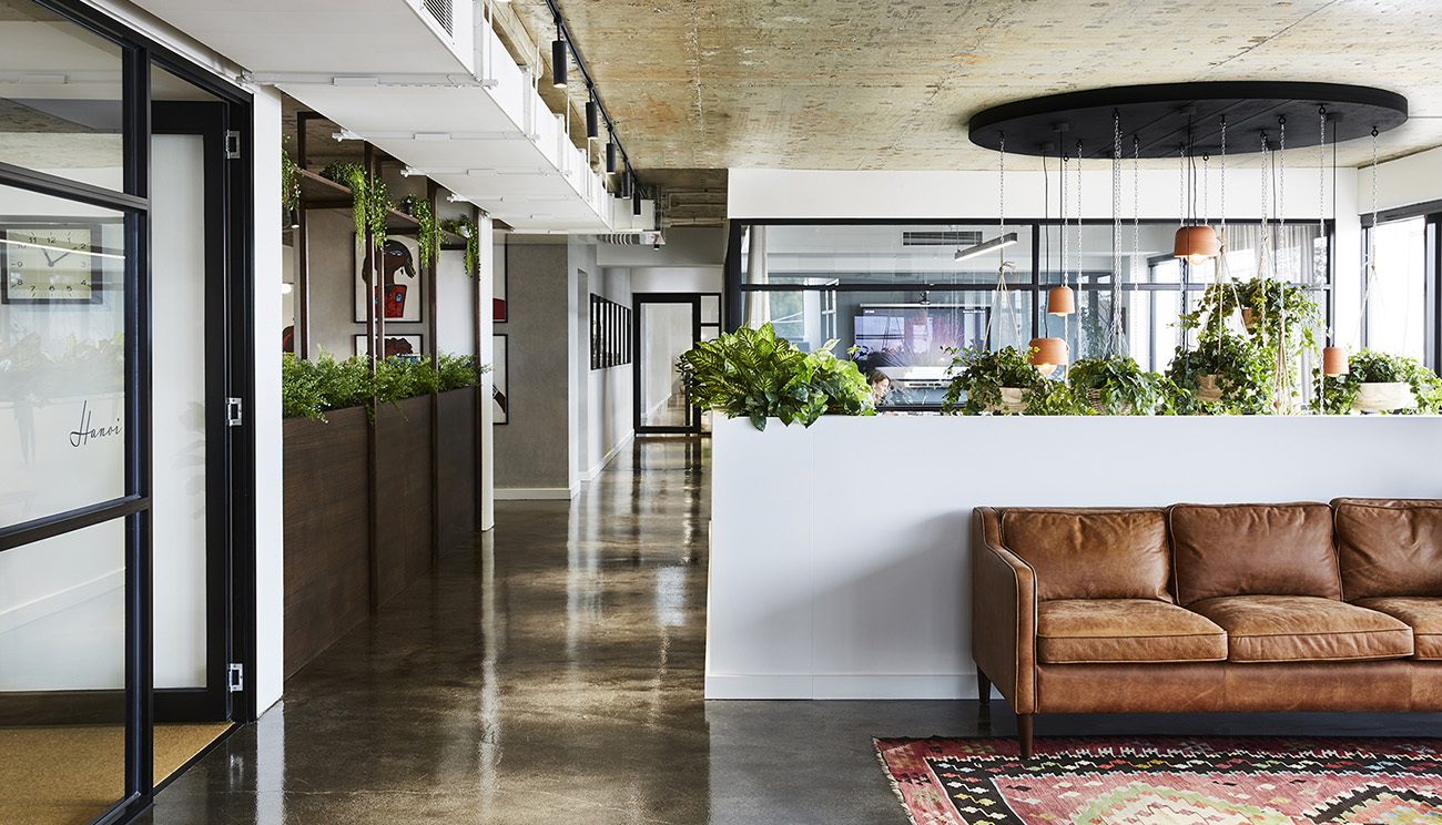 A Tour of Carman's Modern New HQ in Melbourne