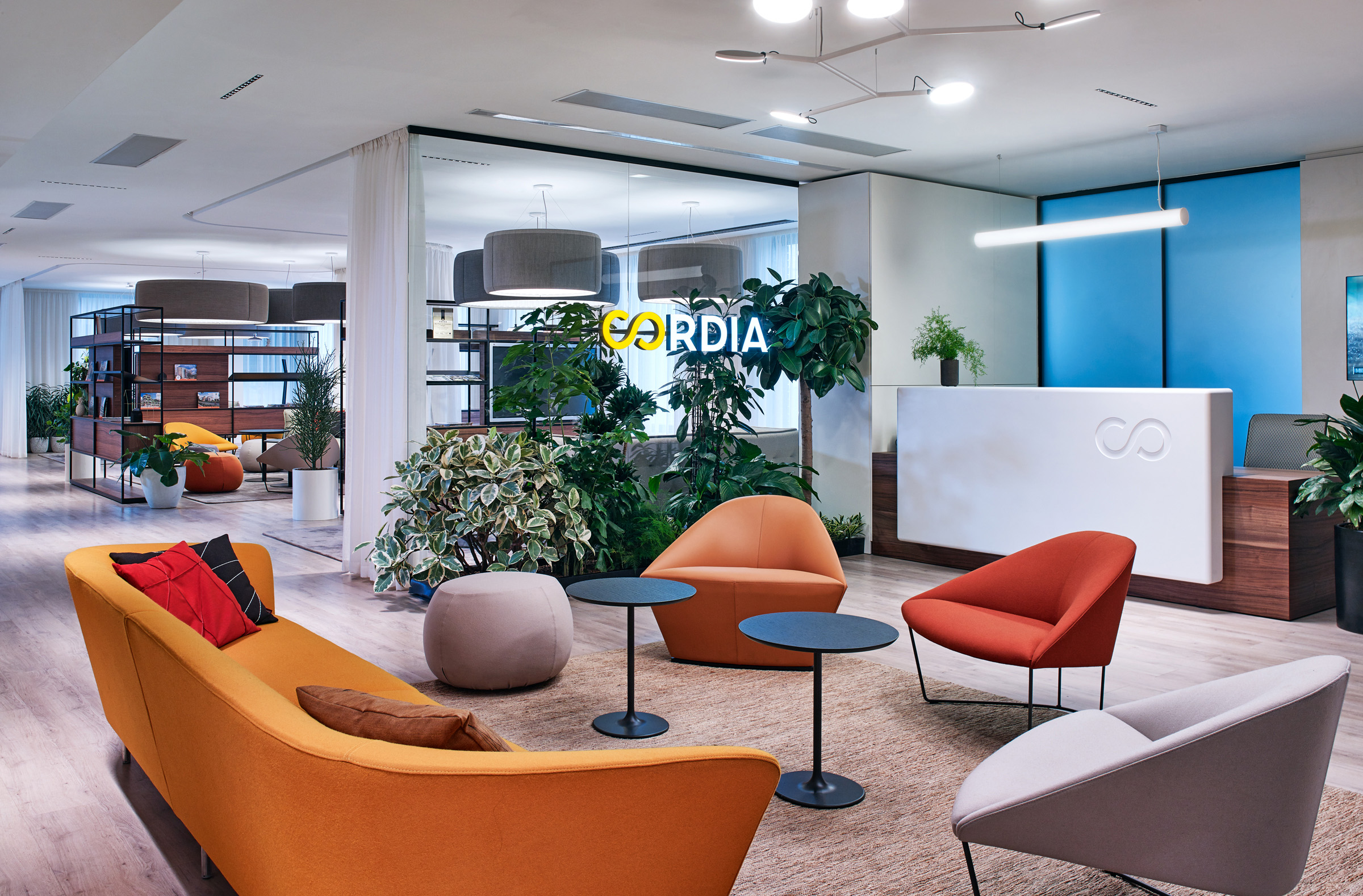 A Look Inside Cordia's Marketing Office in Budapest