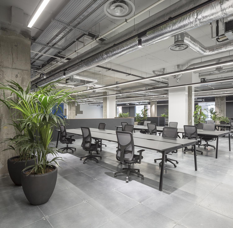 rothco-office-dublin-13