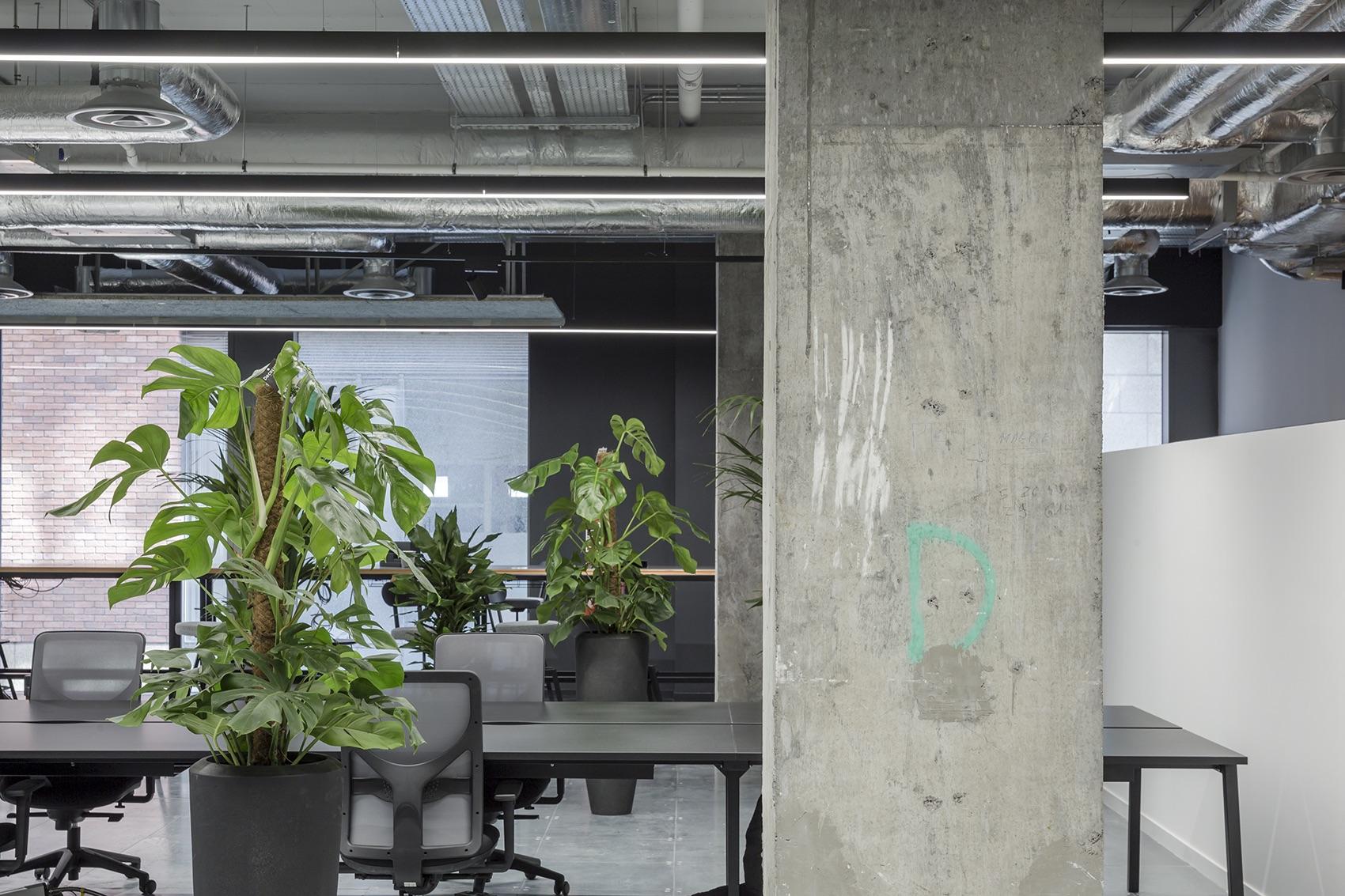 rothco-office-dublin-15