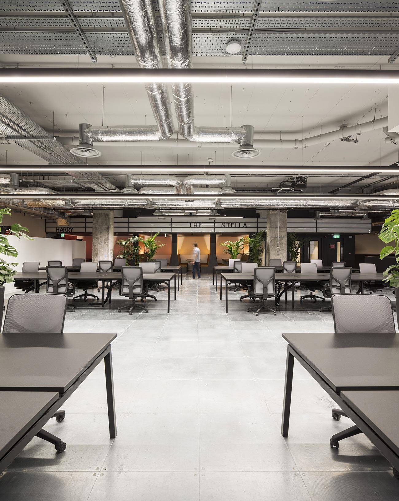 rothco-office-dublin-3