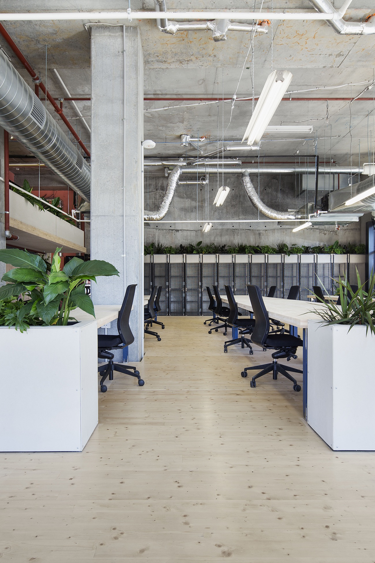 the-guild-coworking-melbourne-4