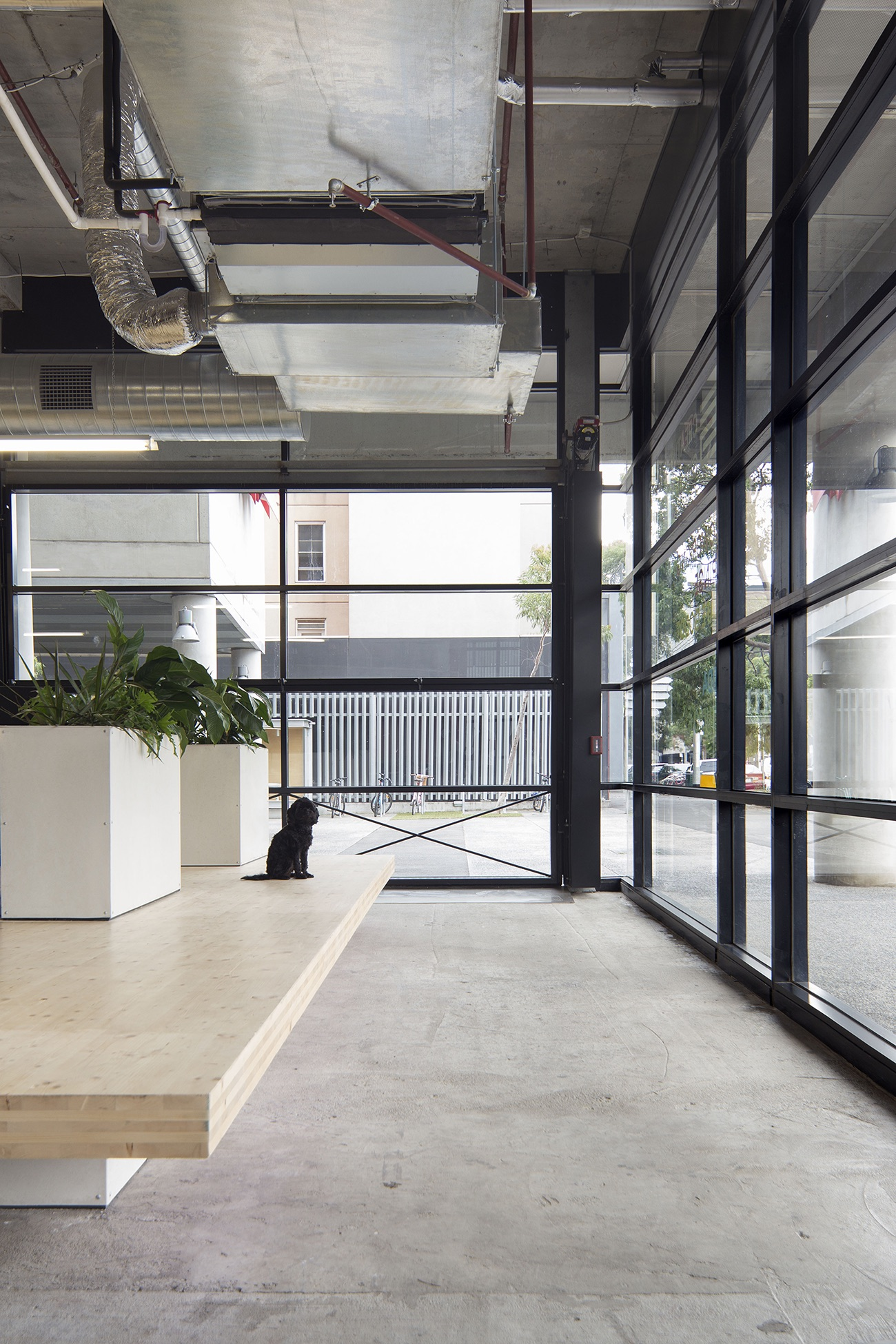 the-guild-coworking-melbourne-8