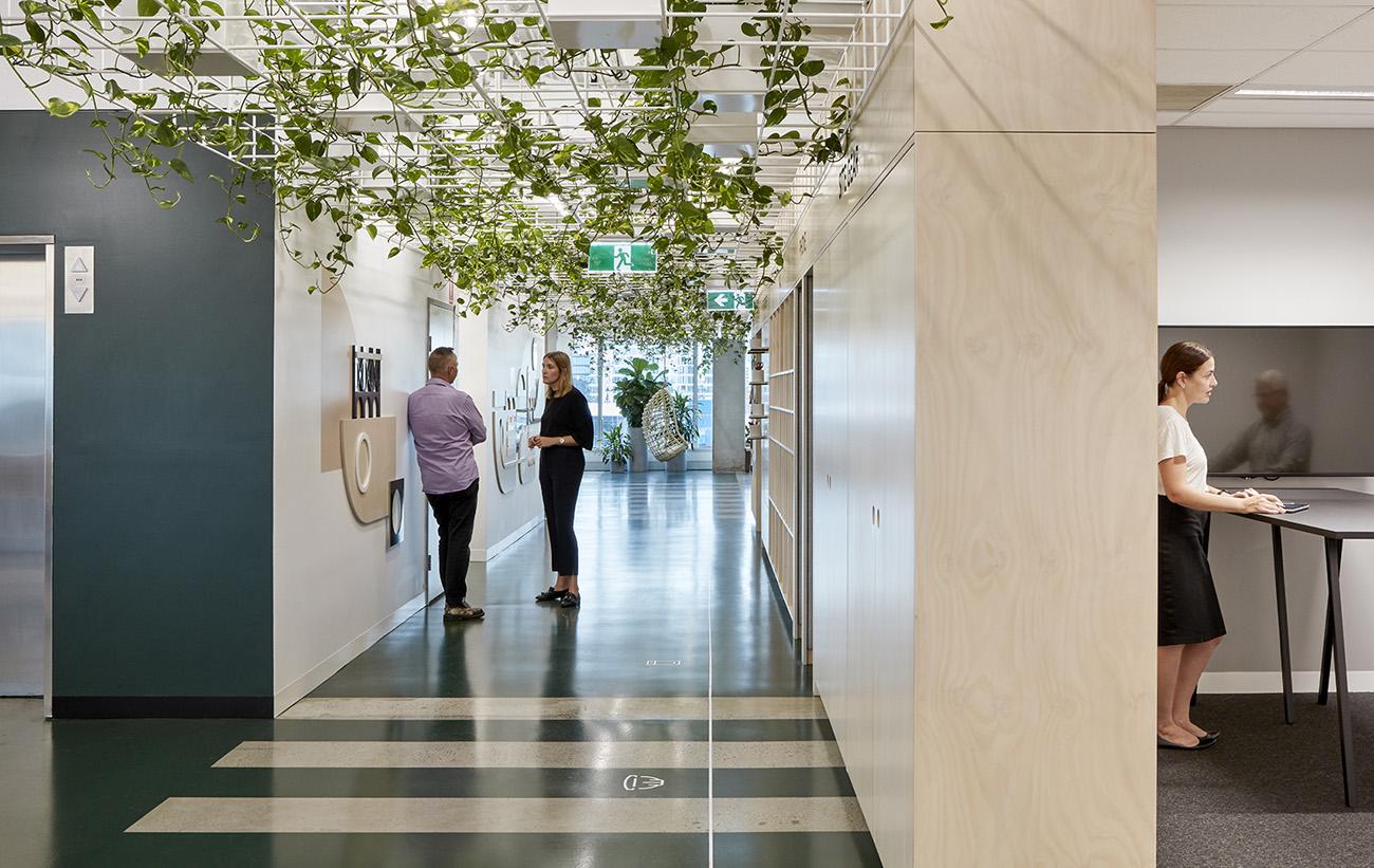 A Peek Inside Cardno's Biophilic Brisbane HQ