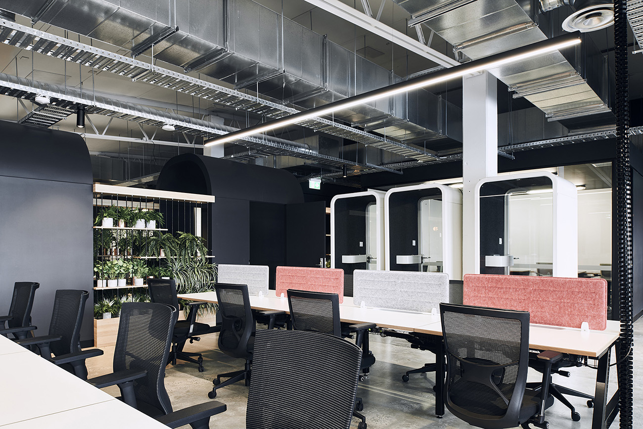 A Tour of CreativeCubesCo's Melbourne Coworking Space – Hawthorn