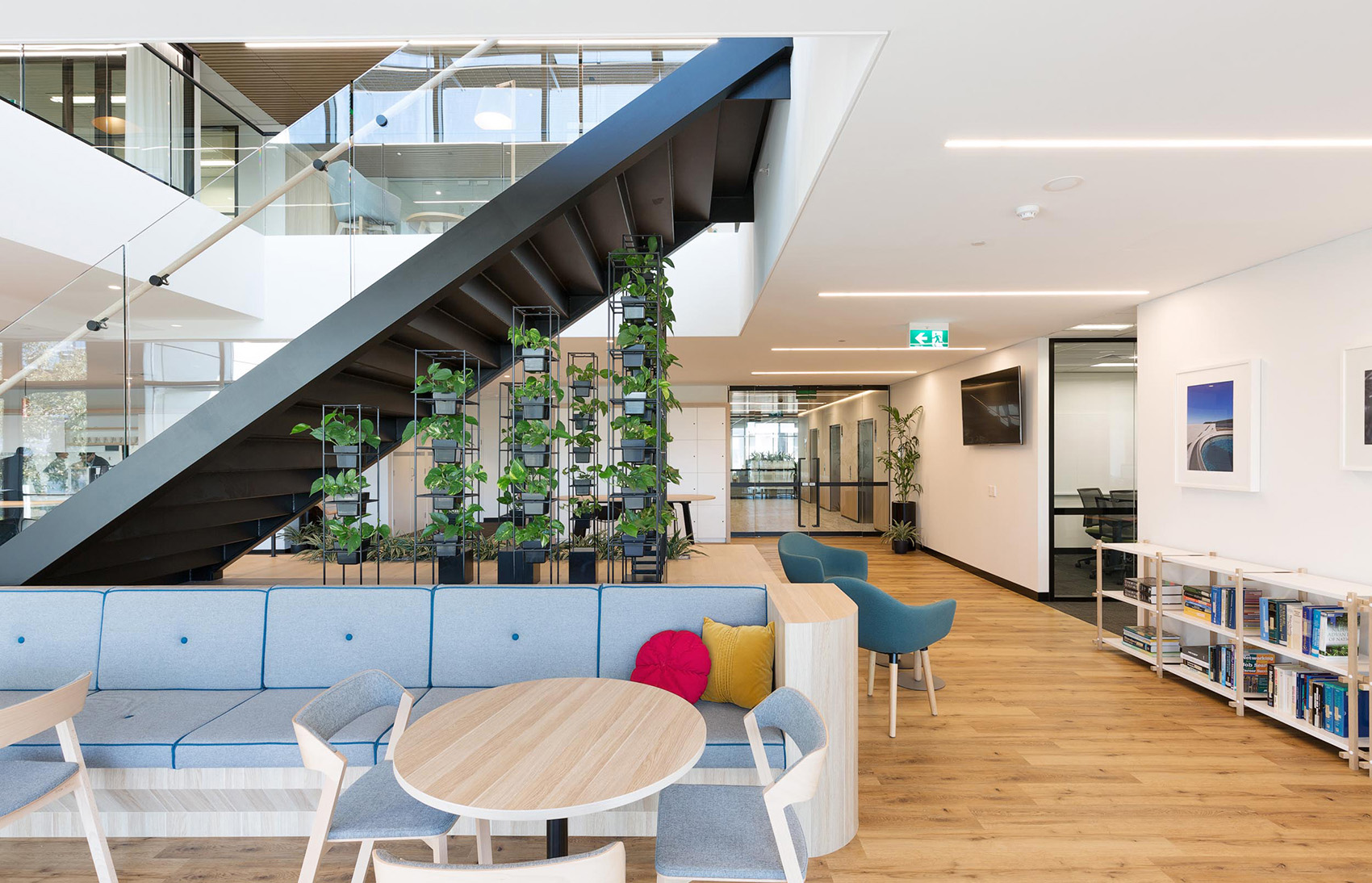 A Tour of SUEZ's Biophilic Sydney Office