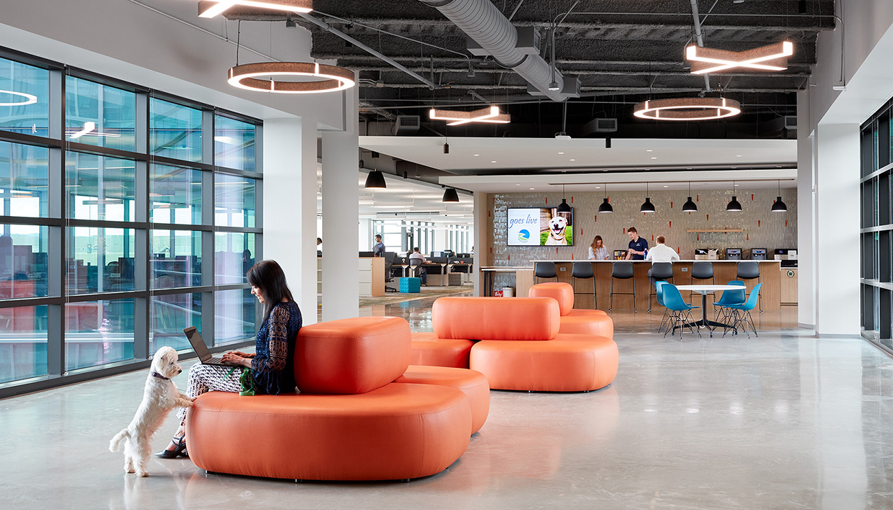 A Tour of Mars Petcare's New North American HQ