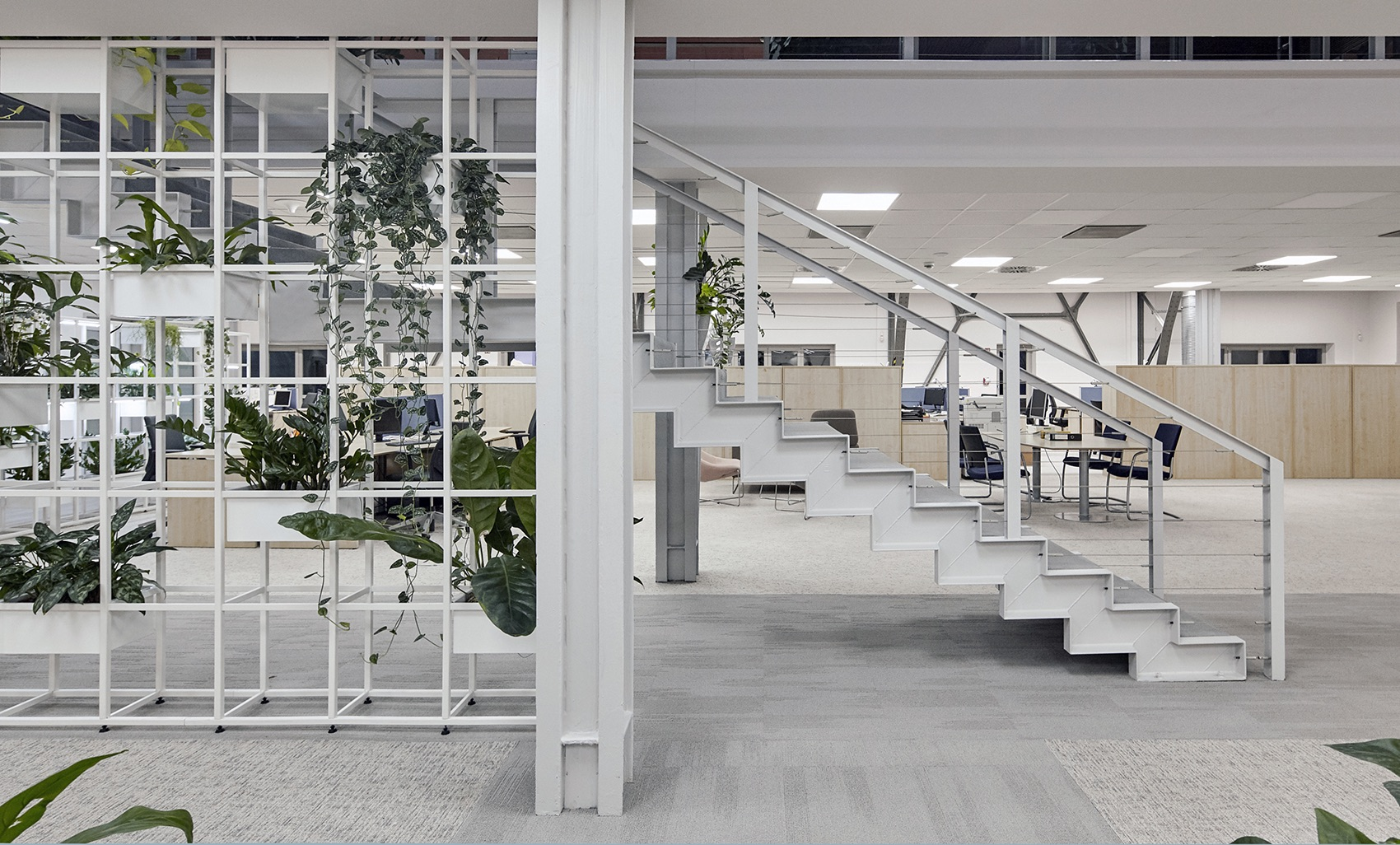 wing-zrt-office-8