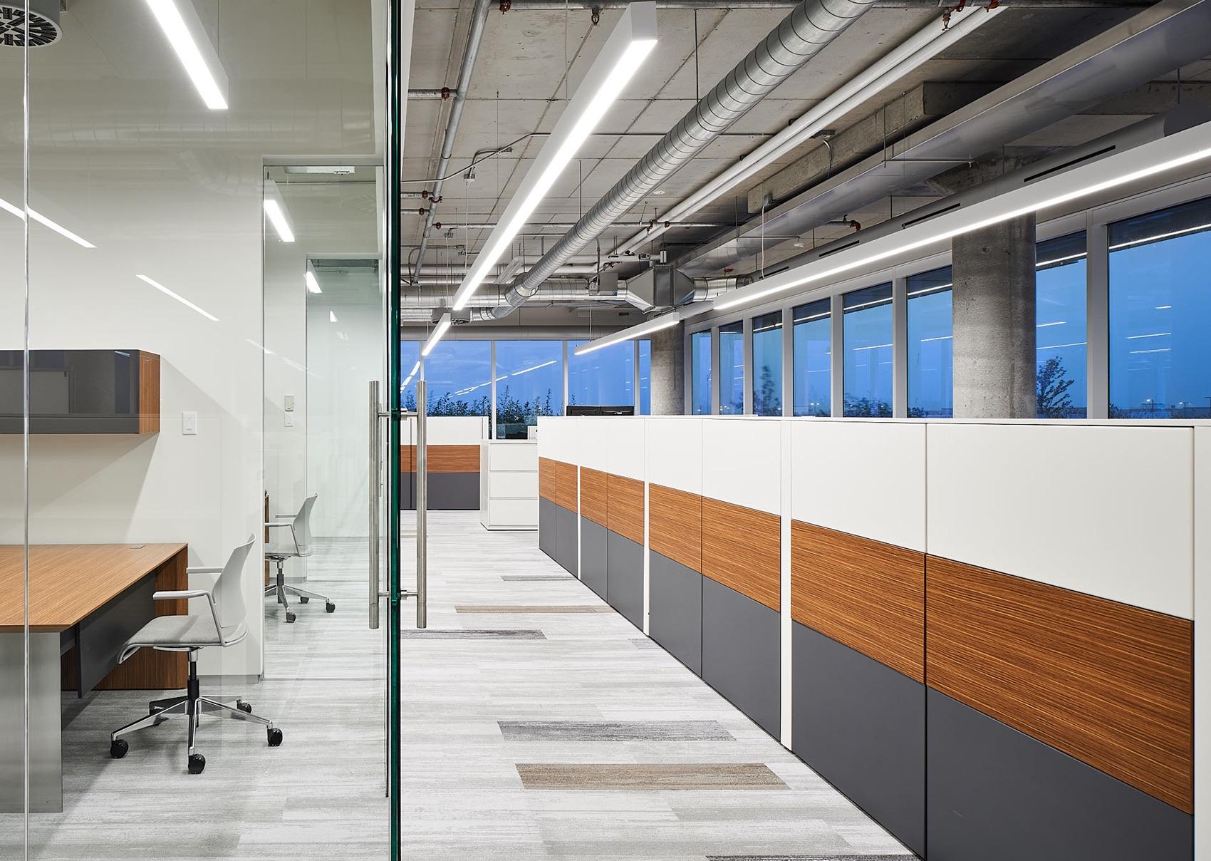 tomlison-ottawa-office-8