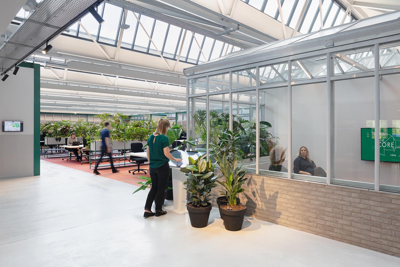 cbre-amsterdam-office-13