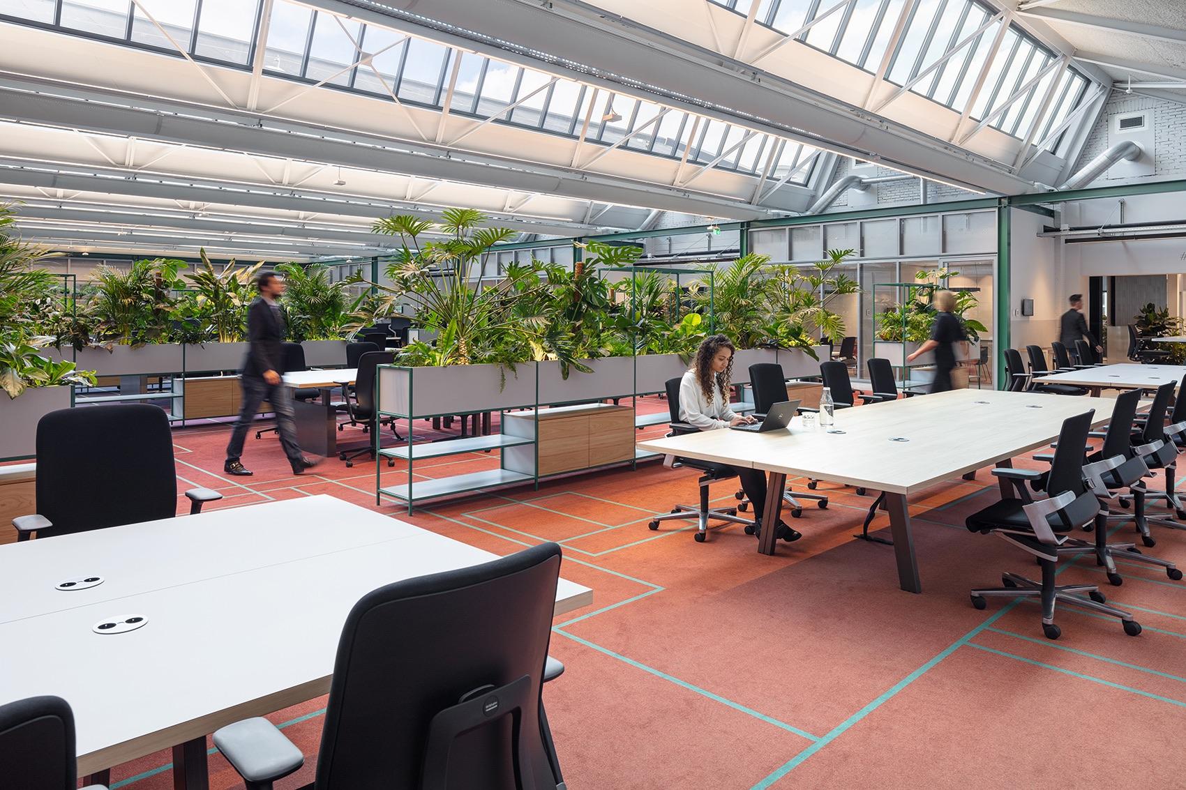 cbre-amsterdam-office-14