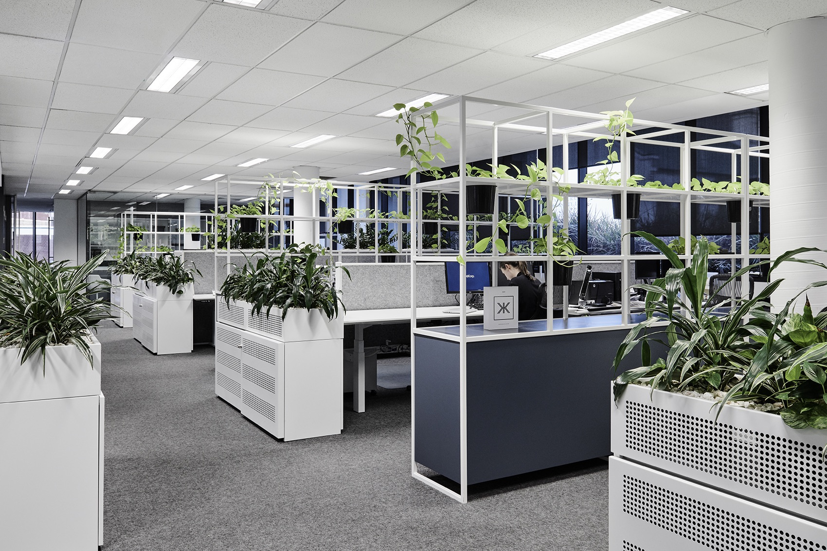 dealcorp-melbourne-office-5