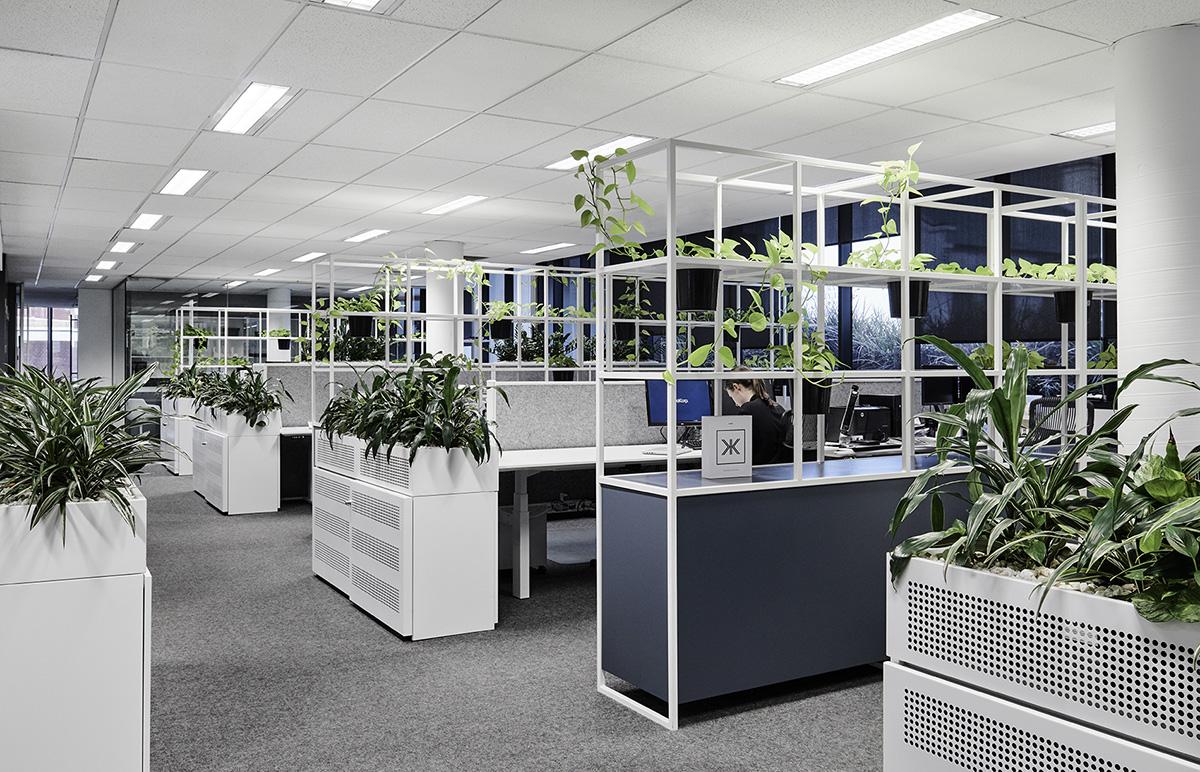 A Look Inside DealCorp's Minimalist Melbourne Office