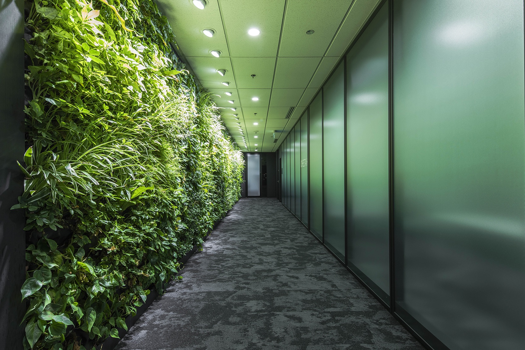 manulife-singapore-office-10