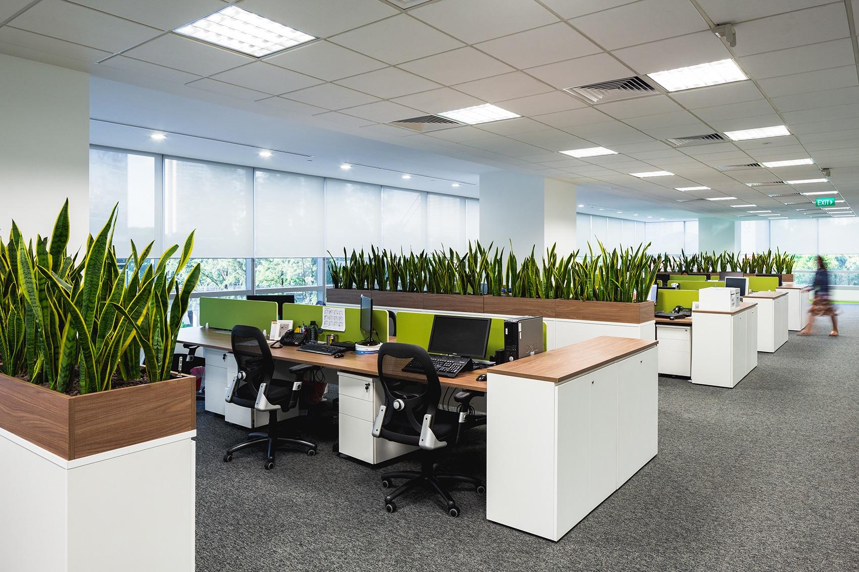 crocs-singapore-office-21