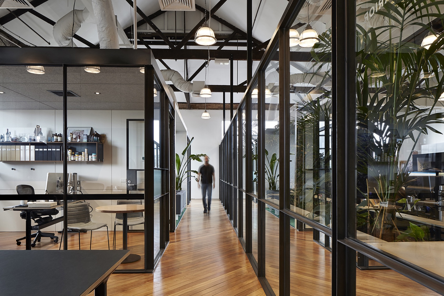 light-warrior-cremorne-office-1