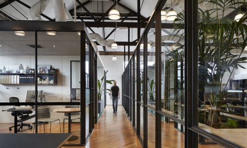 light-warrior-cremorne-office-mm