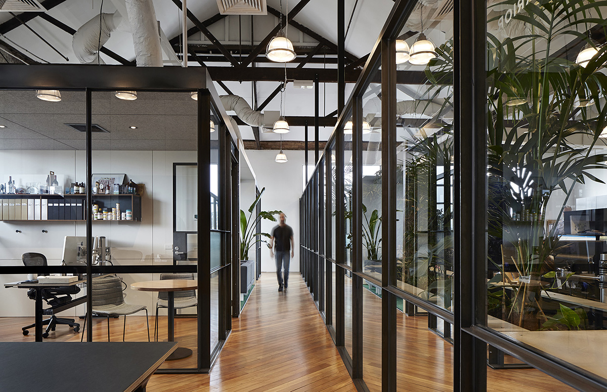 A Tour of Light Warrior's New Cremorne Office