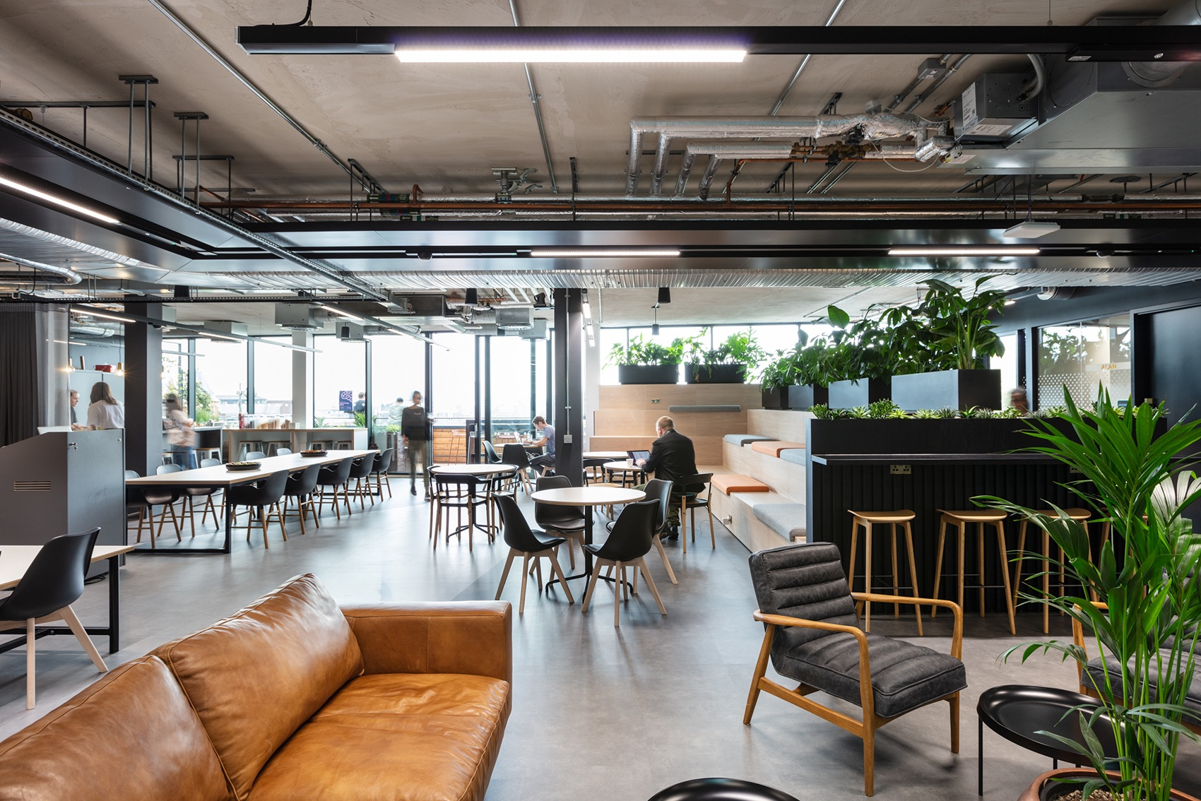 A Look Inside Elements Talent Consultancy's Biophilic London office