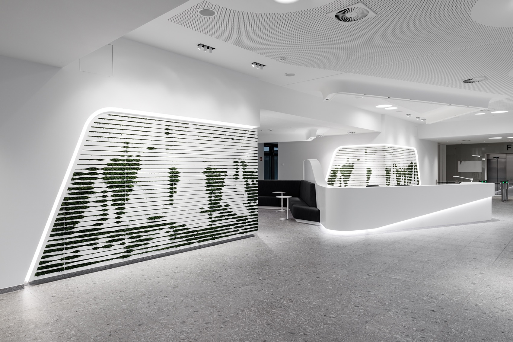 A Tour of Euler Hermes' Biophilic Hamburg Office