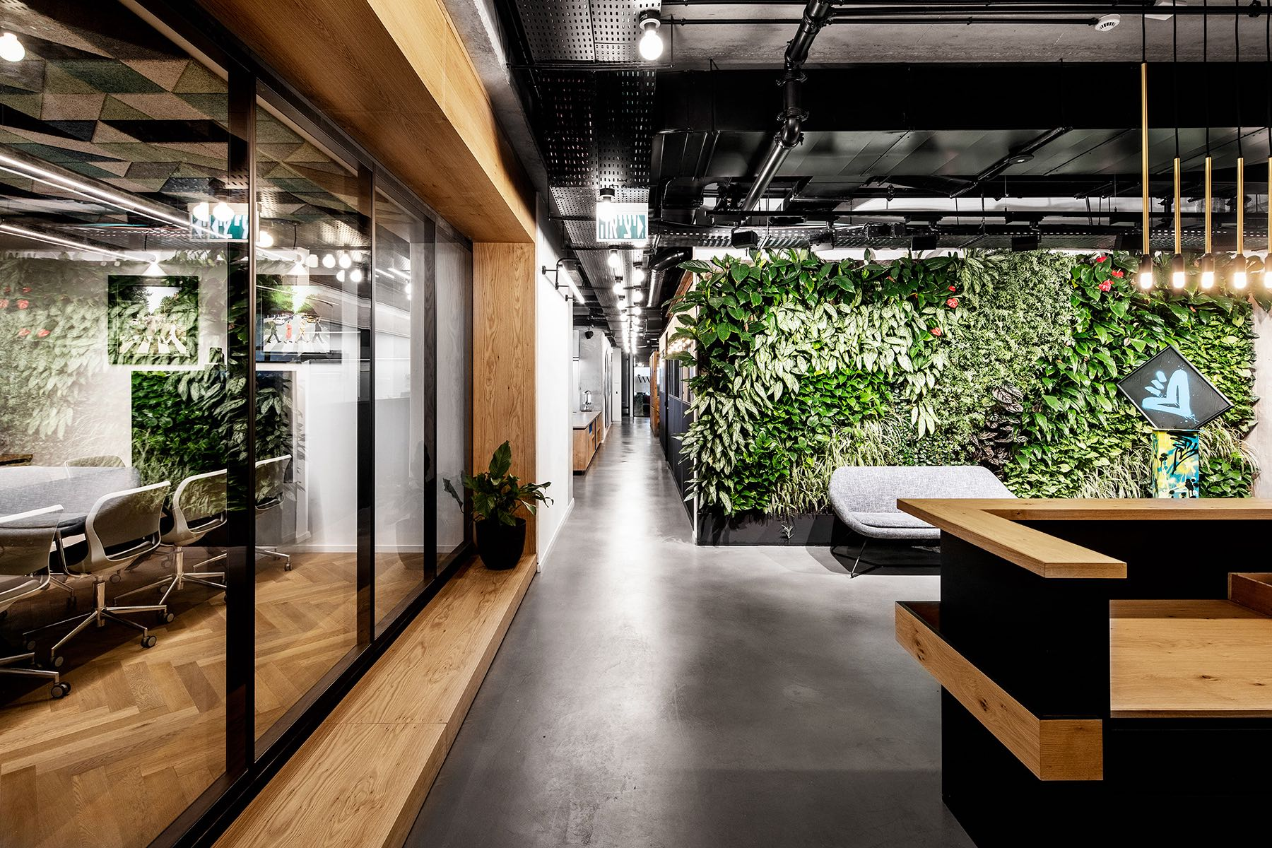 A Look Inside Art Medical's Biophilic Tel Aviv Office
