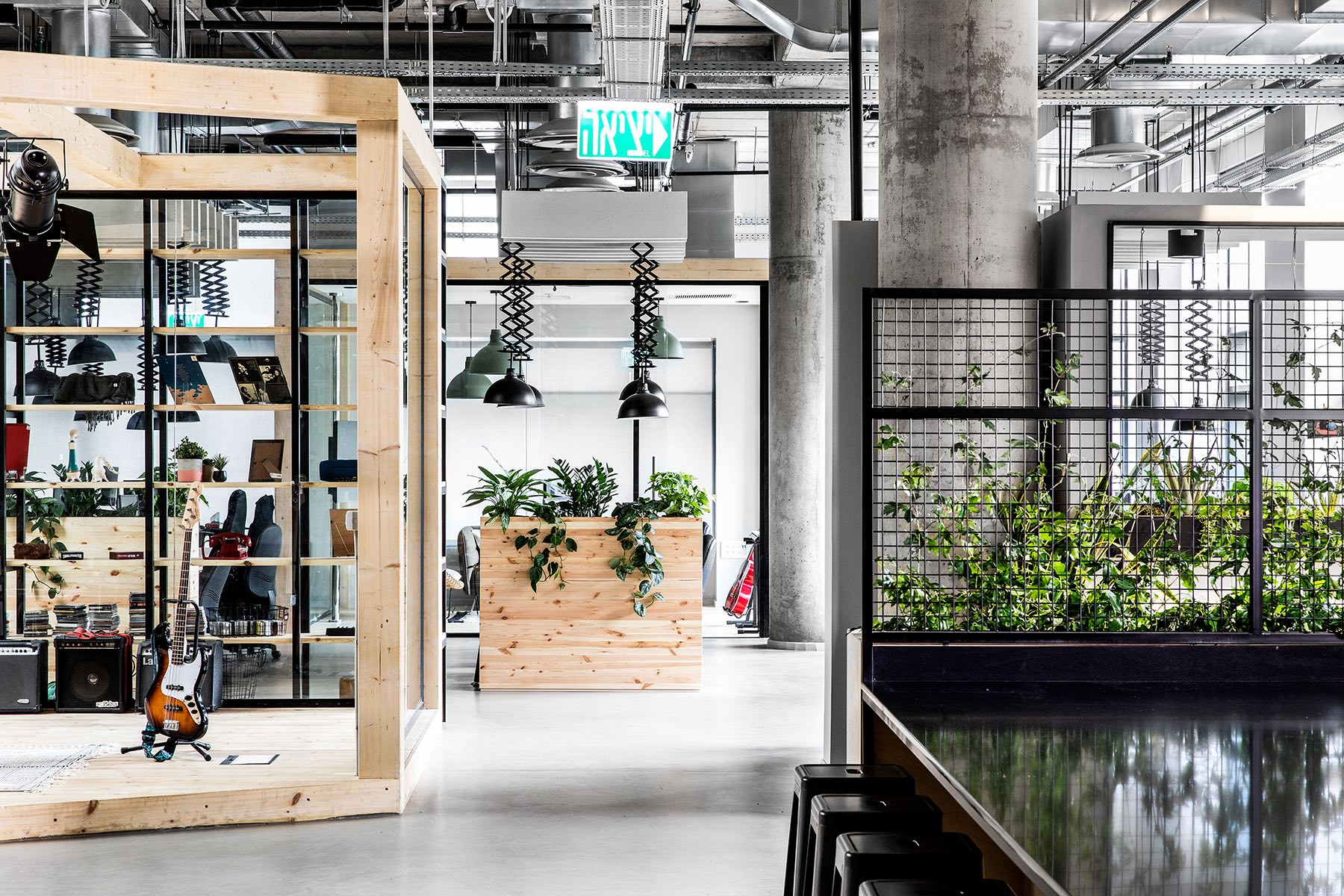 A Look Inside JoyTunes' Biophilic Tel Aviv Office