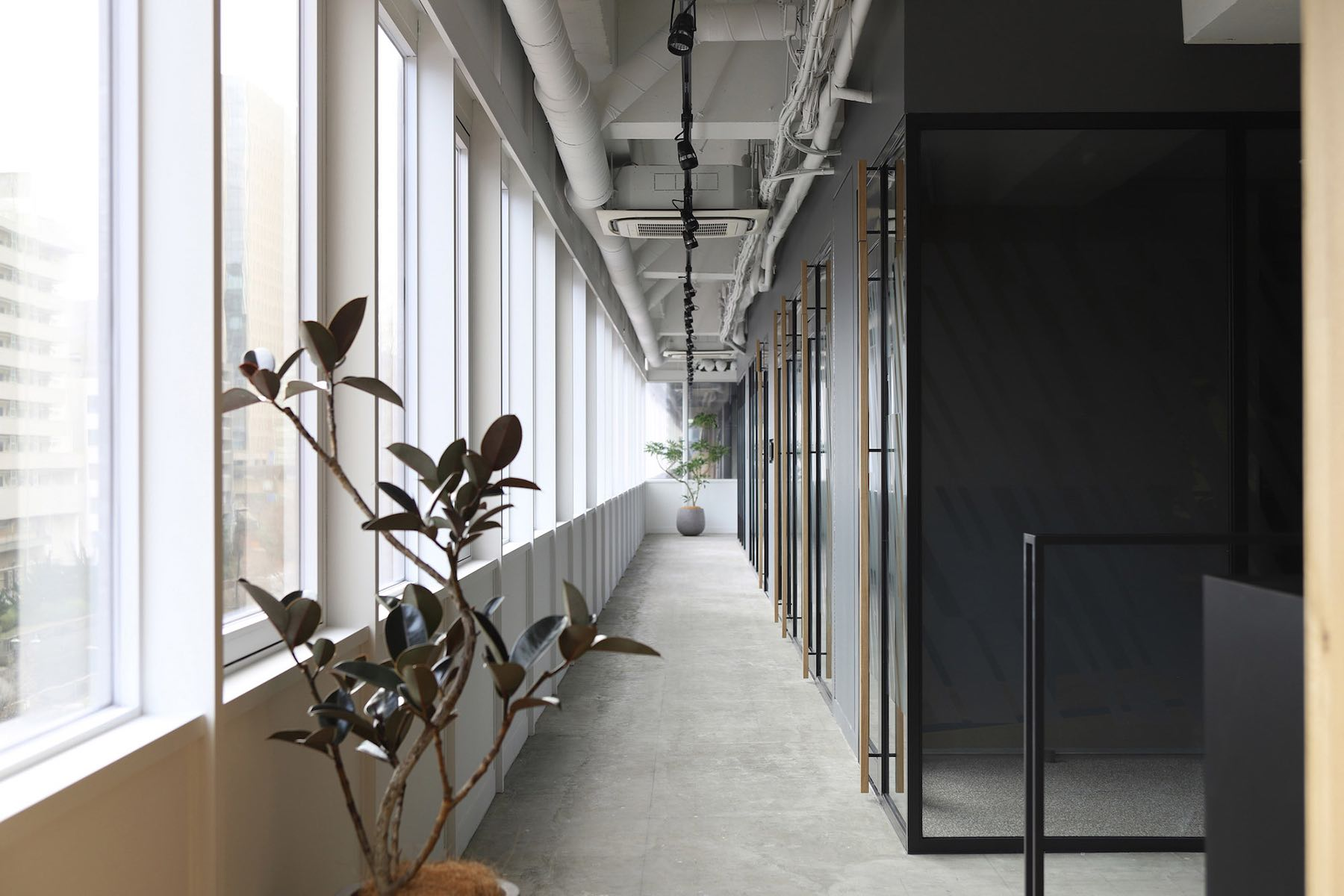 tbwa-tokyo-office-6