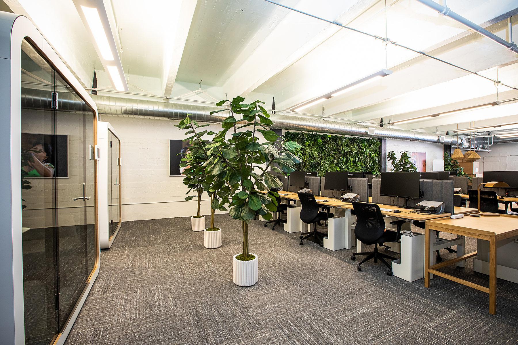 kiva-san-francisco-office-8