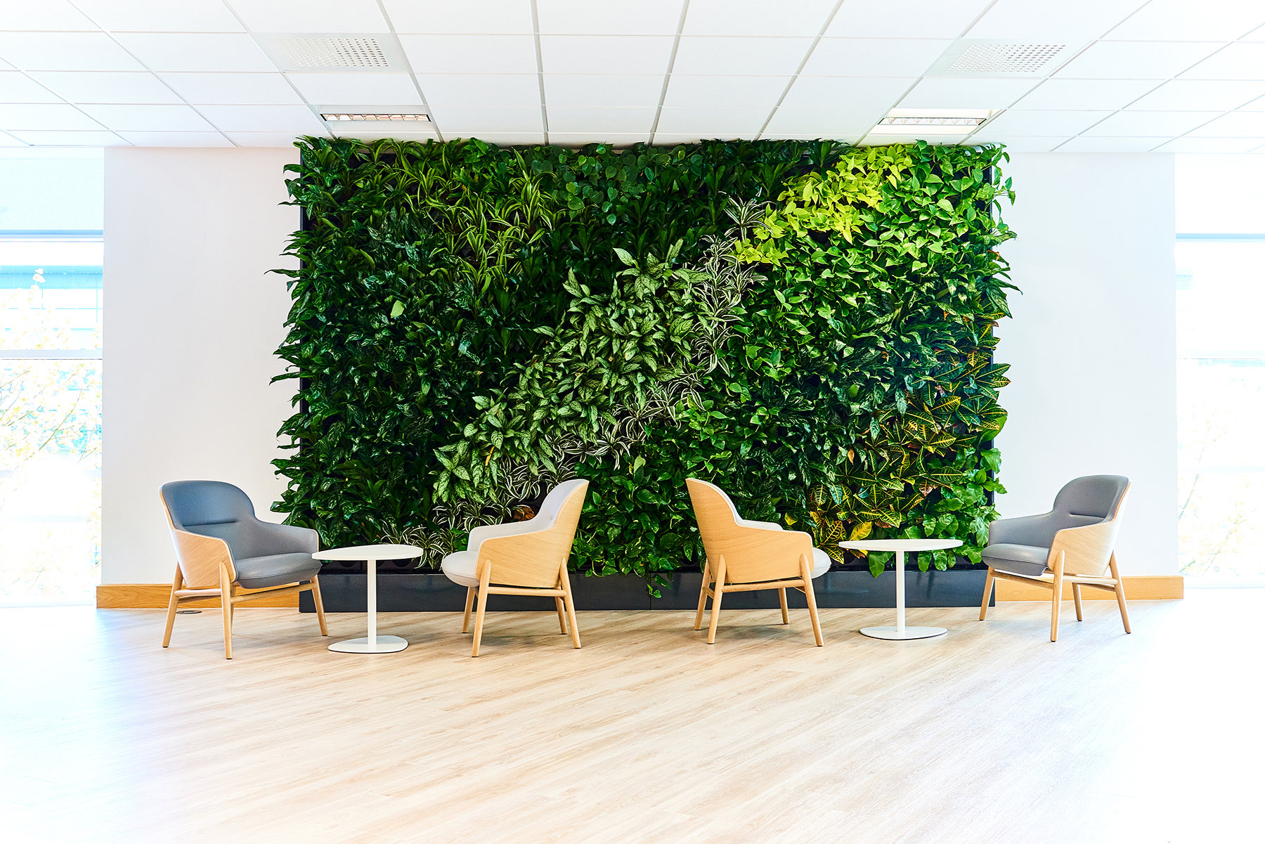 A Look Inside Private Technology Company Offices in Newcastle