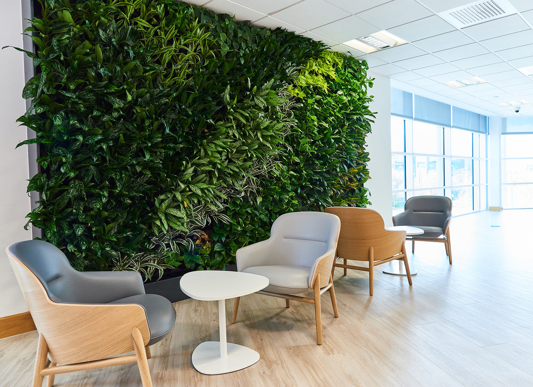 technology-company-office-newcastle-7