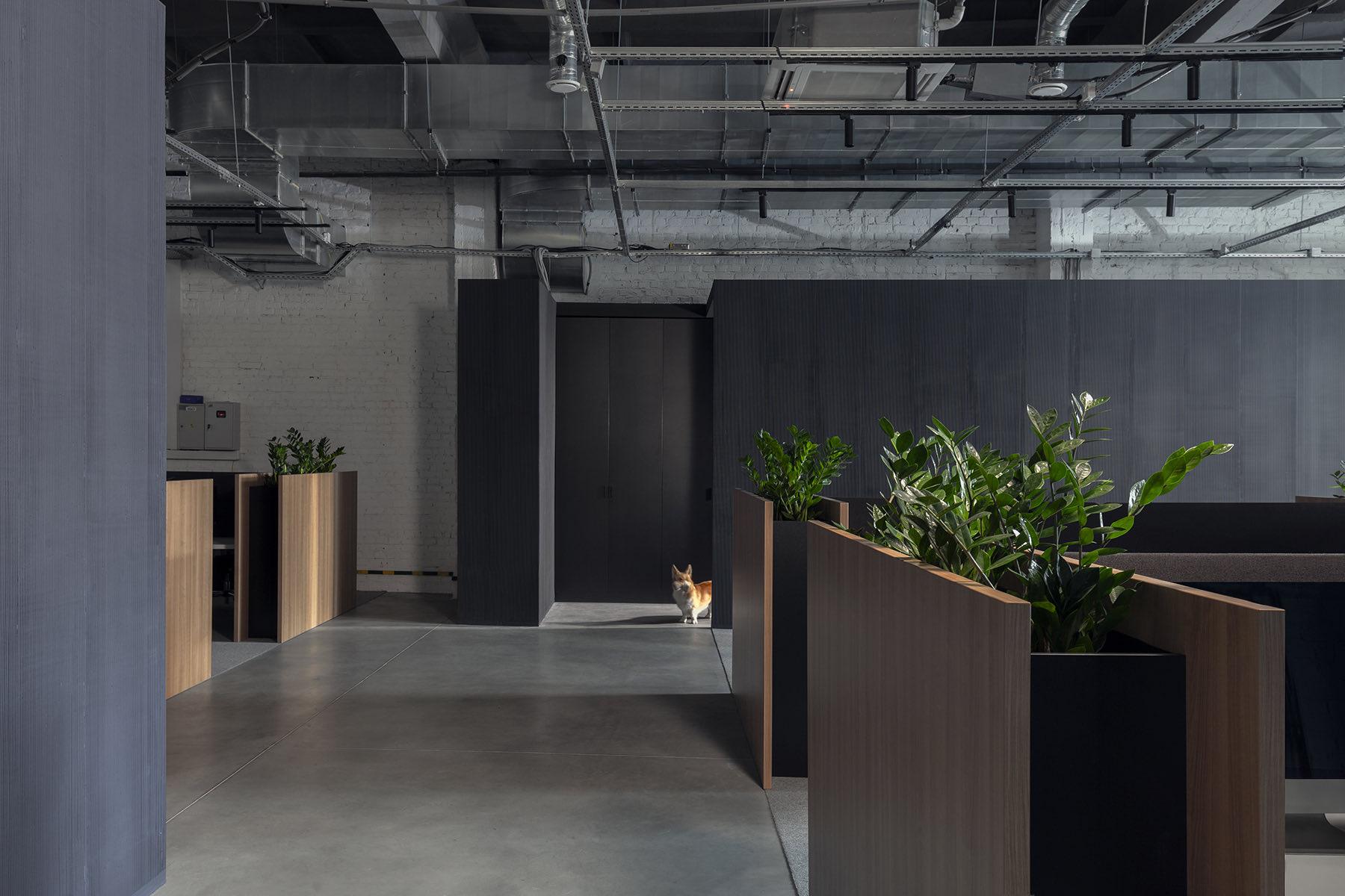loona-minsk-office-6